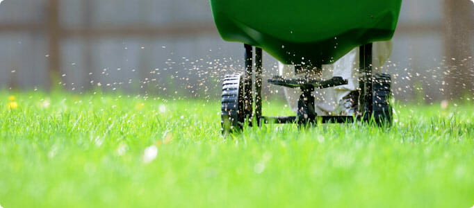 Commercial Lawn Fertilization